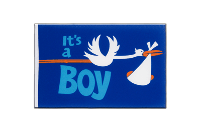 Little It's a boy Flag 6x9""