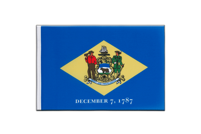 Little Flag Delaware - 6x9""