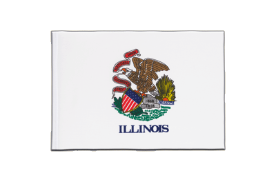 Fanion drapeau Illinois 15x22 cm