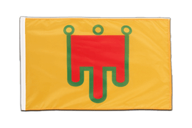 Auvergne - Sleeved Flag PRO 2x3 ft