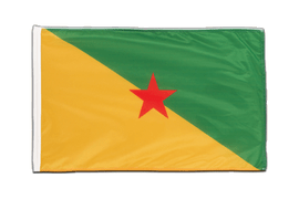 French Guiana - Sleeved Flag PRO 2x3 ft
