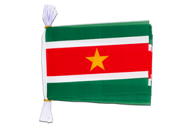"Suriname - Mini Flag Bunting 6x9"", 3 m"