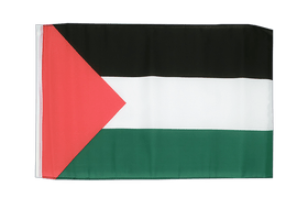 Palestine - 12x18 in Flag
