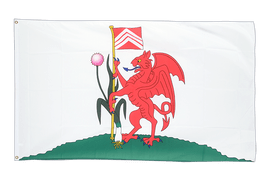 Cardiff City - 3x5 ft Flag