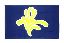 Capital Region Brussels - 3x5 ft Flag