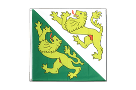 Thurgau - 4x4 ft Flag