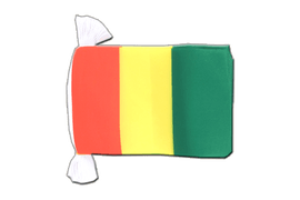 Guinea Flag Bunting - 6x9""