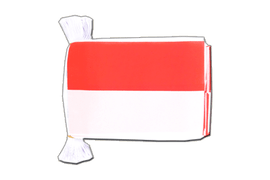 Indonesia - Flag Bunting 6x9""