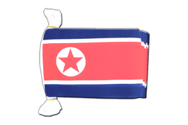 North corea Flag Bunting - 6x9""
