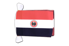 Paraguay Flag Bunting - 6x9""