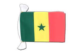 Senegal - Flag Bunting 6x9""