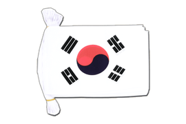 South Korea Flag Bunting - 6x9""