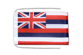Hawaii - Flag with ropes 8x12""