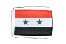Syria - Flag with ropes 8x12""