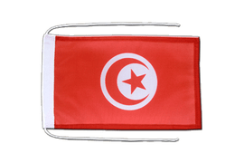 Flag with ropes Tunisia - 8x12""
