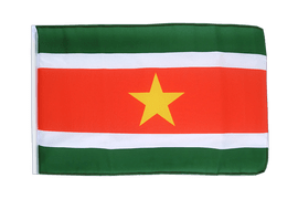 Suriname - 12x18 in Flag