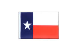 Texas - Mini Flag 4x6""
