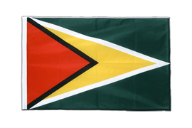 Guyana - Sleeved Flag PRO 2x3 ft