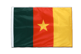 Cameroon - Sleeved Flag PRO 2x3 ft