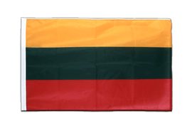 Lithuania - Sleeved Flag PRO 2x3 ft
