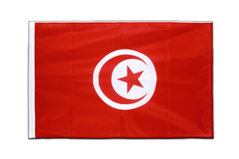 Tunisia - Sleeved Flag PRO 2x3 ft