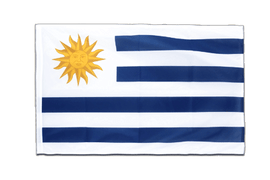 Uruguay - Sleeved Flag PRO 2x3 ft