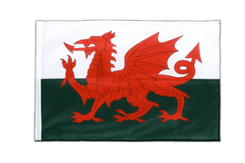 Wales - Sleeved Flag PRO 2x3 ft