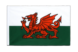 Wales - Sleeved Flag ECO 2x3 ft