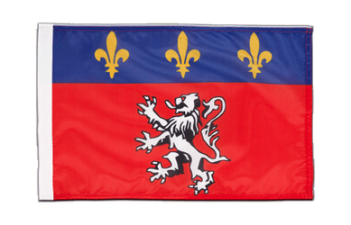 Lyon 12x18 in Flag