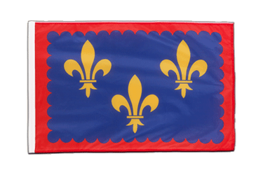 Berry - Sleeved Flag PRO 2x3 ft