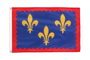 Berry Grommet Flag PRO 2x3 ft