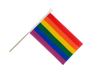 Rainbow Hand Waving Flag 6x9""