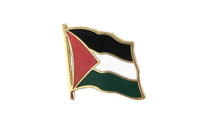 Palestine Flag Lapel Pin
