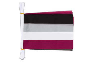 "Asexual Mini Flag Bunting 6x9"", 3 m"