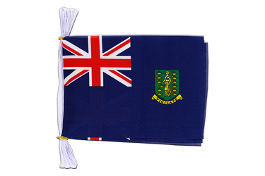 "British Virgin Islands Mini Flag Bunting 6x9"", 3 m"
