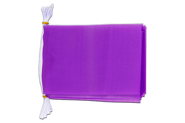 "Unicolor Purple Flag Bunting 6x9"", 3 m"