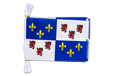 "France Picardie - Mini Flag Bunting 6x9"", 3 m"