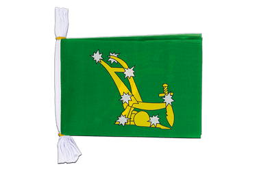 "Ireland Starry Plough green 1916-1934 Mini Flag Bunting 6x9"", 3 m"
