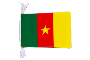 "Cameroon Flag Bunting 6x9"", 3 m"