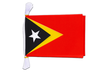 "East Timor - Mini Flag Bunting 6x9"", 3 m"