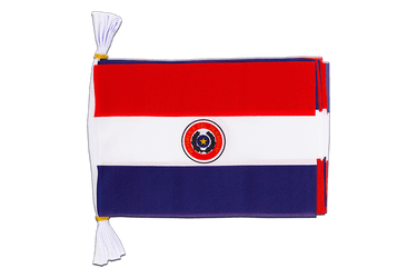 "Paraguay Flag Bunting 6x9"", 3 m"