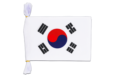 "South Korea - Mini Flag Bunting 6x9"", 3 m"
