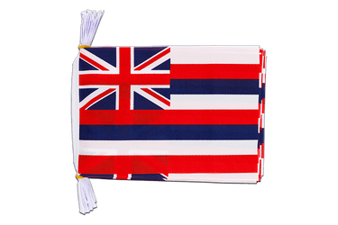 USA Hawaii Fahnenkette 15 x 22 cm, 3 m