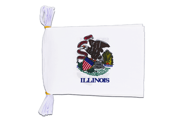"USA Illinois Mini Flag Bunting 6x9"", 3 m"