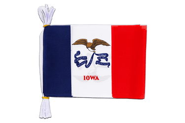 "USA Iowa - Mini Flag Bunting 6x9"", 3 m"
