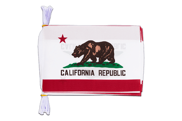 "USA California Flag Bunting 6x9"", 3 m"
