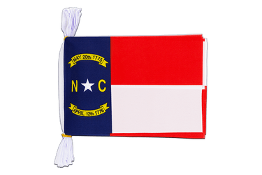 "USA North Carolina Mini Flag Bunting 6x9"", 3 m"