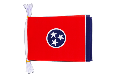 "USA Tennessee Flag Bunting 6x9"", 3 m"