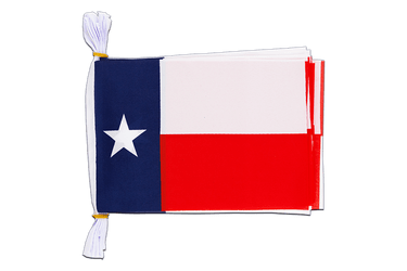 "USA Texas - Mini Flag Bunting 6x9"", 3 m"