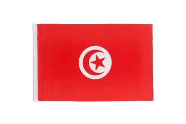 Tunisia - Little Flag 6x9""
